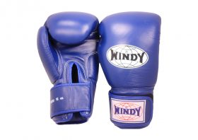 Windy Boxing Gloves (Blue)
