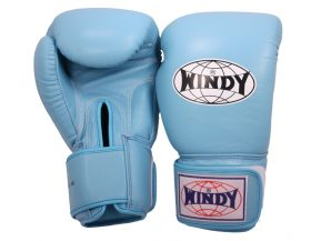 Windy Boxing Gloves (Light Blue)