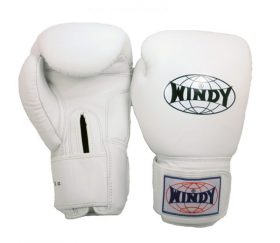 Windy Boxing Gloves (White)