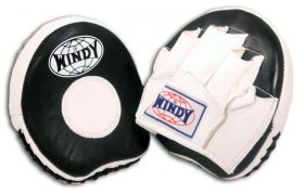Windy Mini Punch Mitts-0